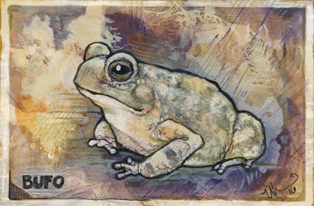 toadgrunge