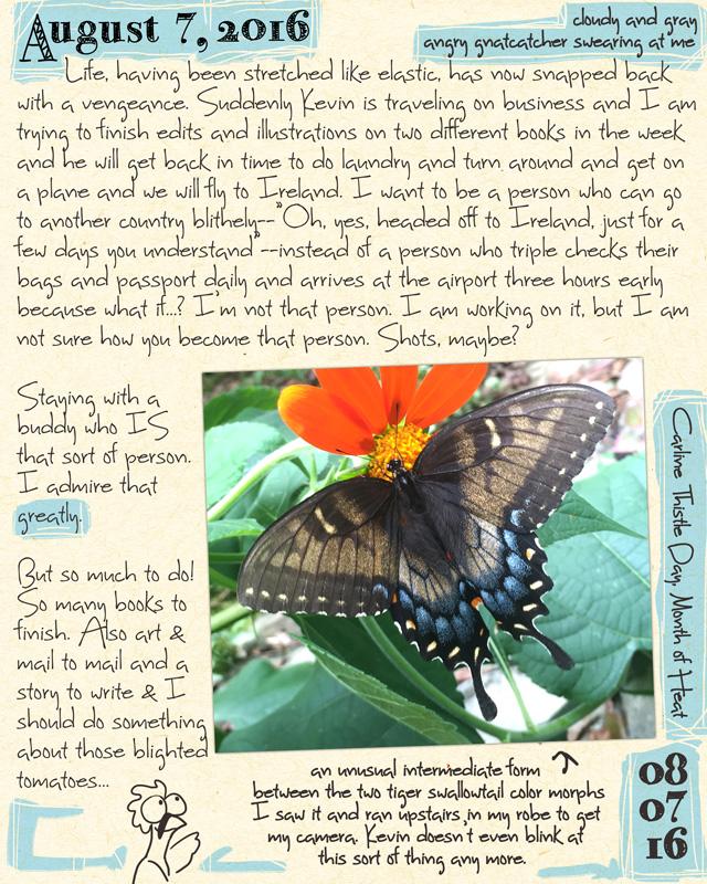 journal8-07-16